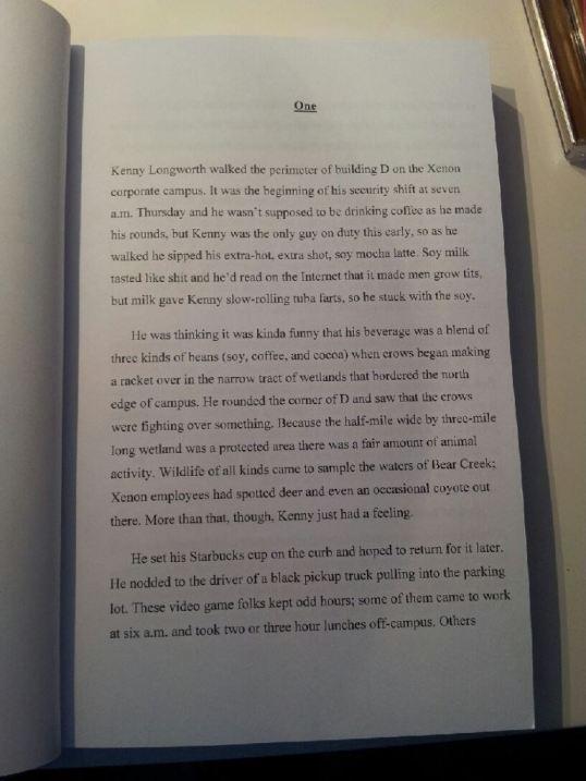Derp Book
